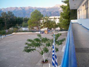 1o gymnasio spartis